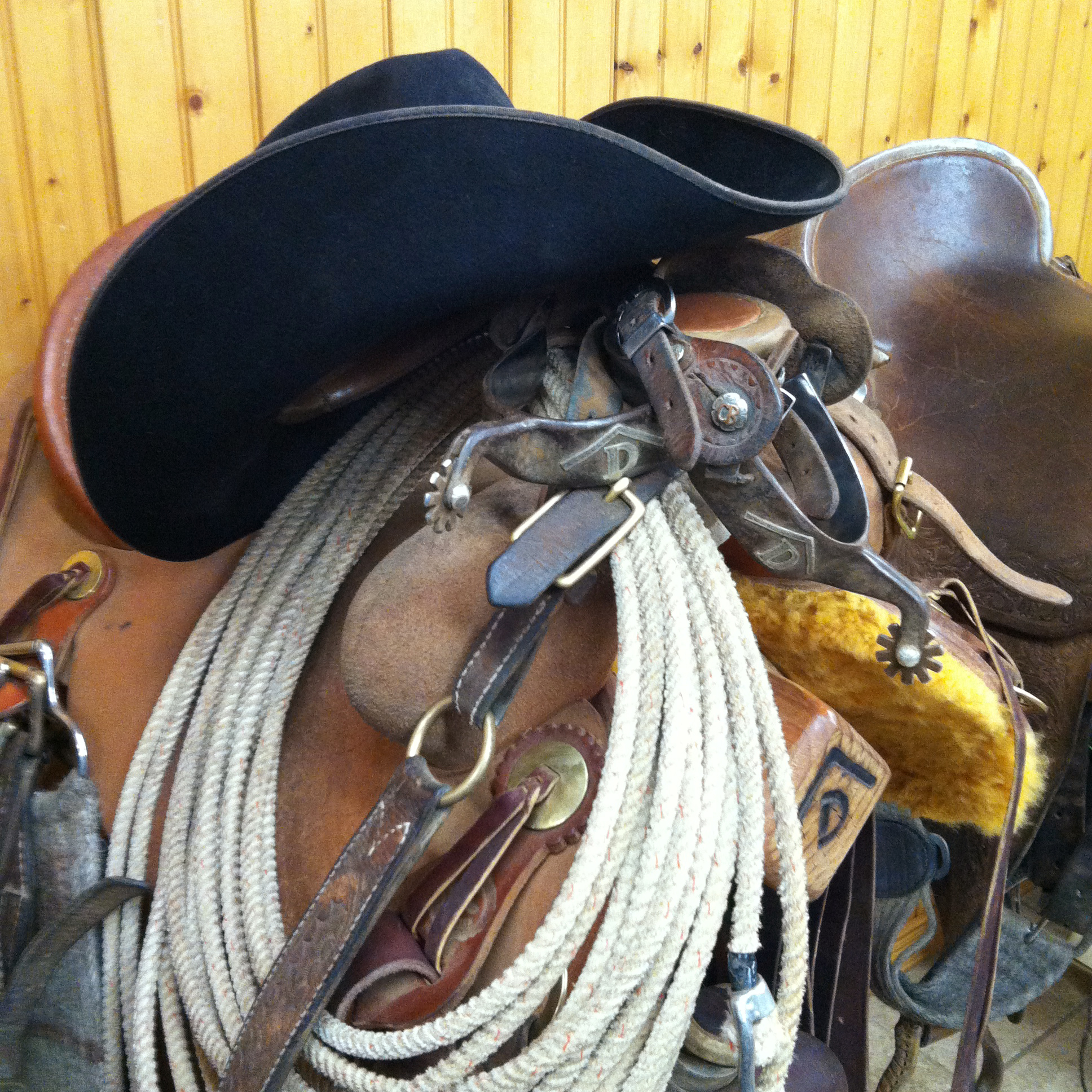 Spurs and Saddle